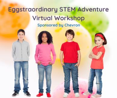 Virtual STEM Workshop