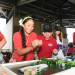 Hands-On STEM Day 2017